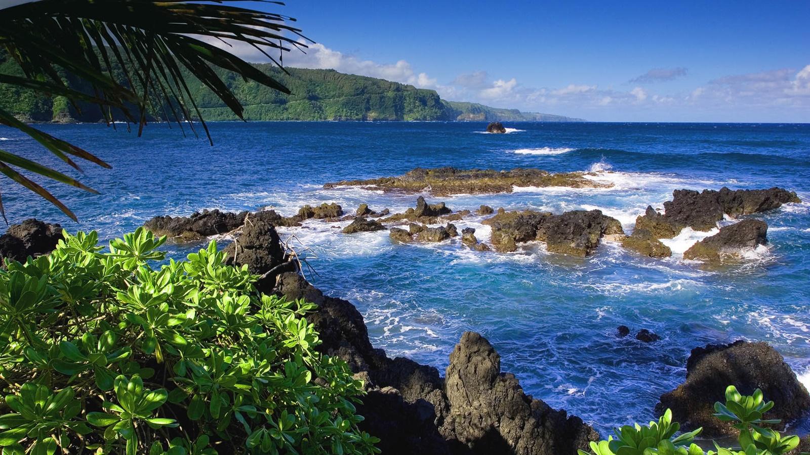 マウイ島 ハワイ アメリカ 海 デスクトップの壁紙 1600x900 壁紙をダウンロード Ja Hdwall365 Com