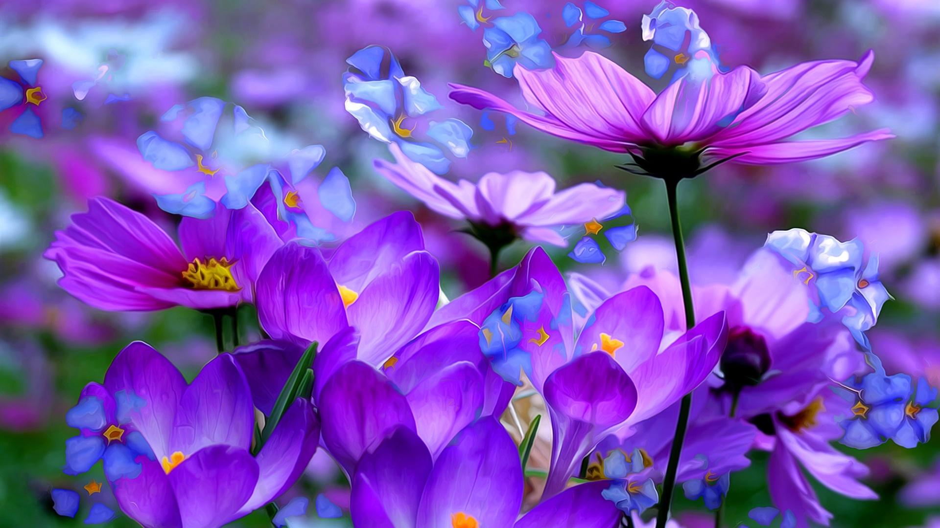 紫のクロッカスの花、花びら、マクロ、芸術インク デスクトップの壁紙 | 1920x1080 壁紙をダウンロード ... Hd Wallpaper 1920x1080